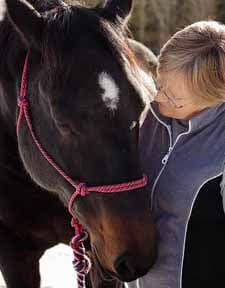 Yoga opens our hearts to horses